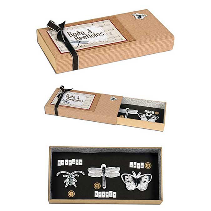 Cabinets de curiosités - Set de 6 papiers - 30,5 x 30,5 cm
