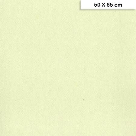 Etival - Papiers dessin à grain couleur - 160g - 50 x 65 cm - Vert tilleul