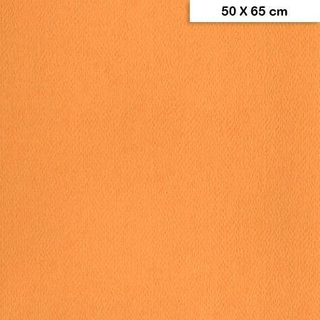 Etival - Papiers dessin à grain couleur - 160g - 50 x 65 cm - Saumon