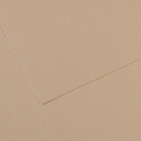 Papier Mi-Teintes - 50 x 65 cm - 160 g/m² - gris trianon (343)
