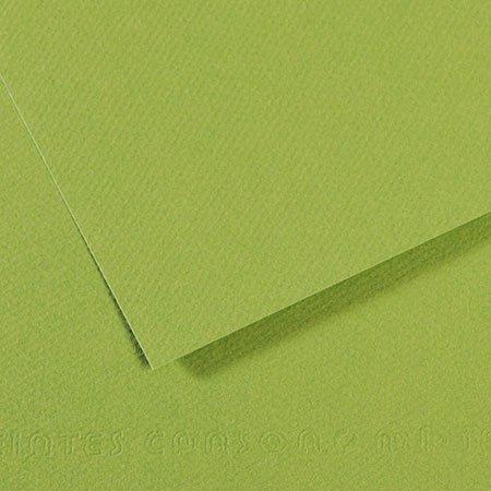 Papier Mi-Teintes - 50 x 65 cm - 160 g/m² - vert pomme (475)