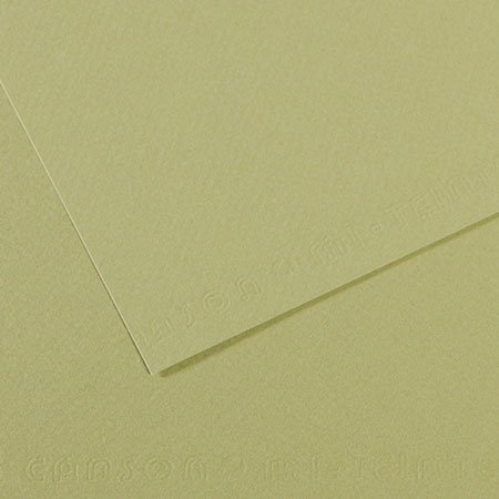 Papier Mi-Teintes - 50 x 65 cm - 160 g/m² - vert amande (480)