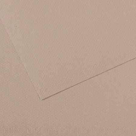 Papier Mi-Teintes - 50 x 65 cm - 160 g/m² - gris flanelle (122)