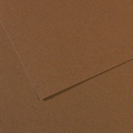 Papier Mi-Teintes - 50 x 65 cm - 160 g/m² - sépia (133)