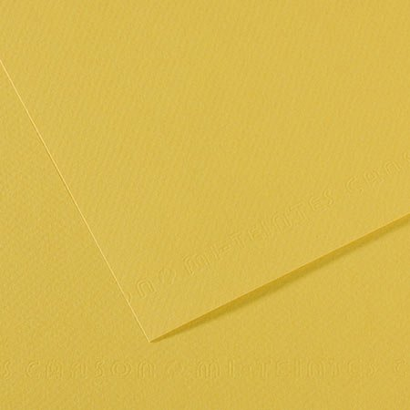 Papier Mi-Teintes - 50 x 65 cm - 160 g/m² - anis (107)