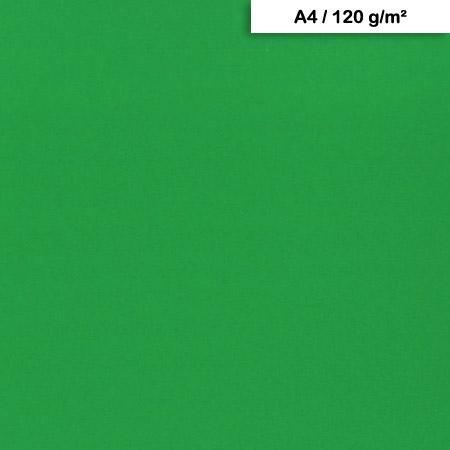 Pack de Papier Maya x 25f. - 120g - A4 - Vert sapin