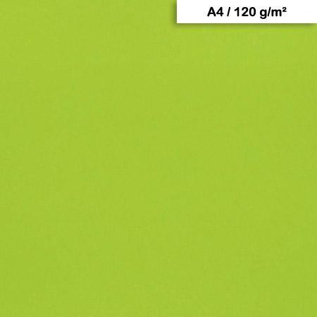 Pack de Papier Maya x 25f. - 120g - A4 - Vert mousse
