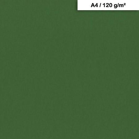 Pack de Papier Maya x 25f. - 120g - A4 - Vert antique