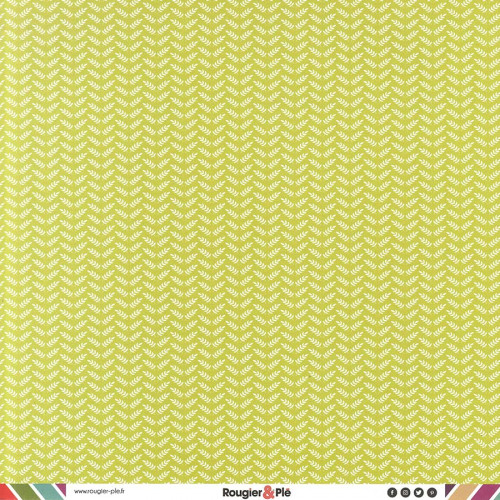 Papier recto-verso - bambou / géométrique