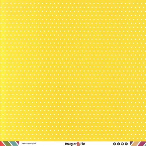 Papier recto-verso - citron / pois & étoiles