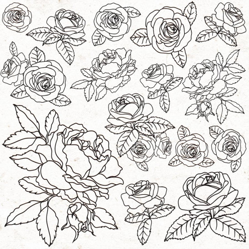Peachy - Papier spécial Gloss Roses