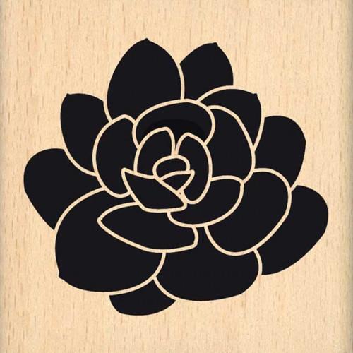 Dakota Valley - Tampon Bois - Grande succulente - 7 x 7 cm