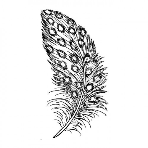 Tampon Bois - Plume - 3,7 x 5,3 cm