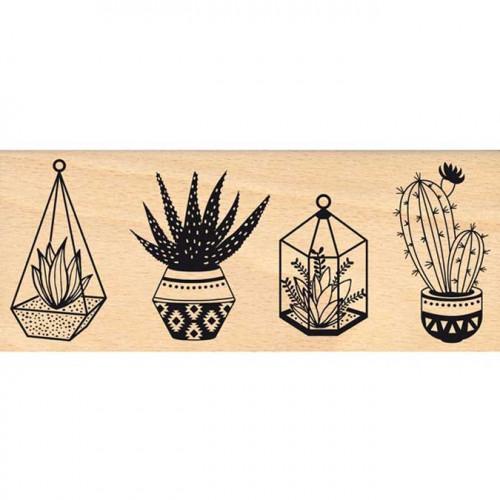 Dakota Valley - Tampon Bois - Petites plantes - 6 x 15 cm