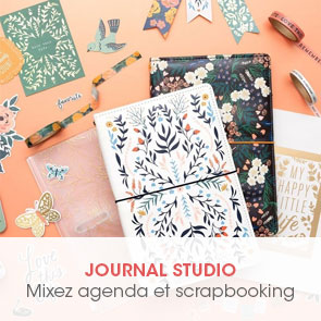 encart_rub_journalstudio